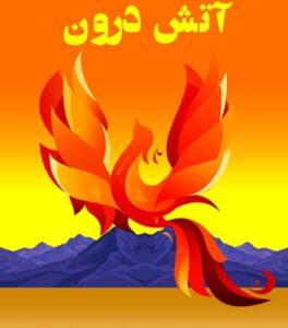 رمان آتش درون از کارلوس کاستاندا